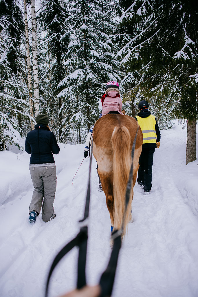 2018-03-24-horse-skiing-2_LR edited_web.jpg