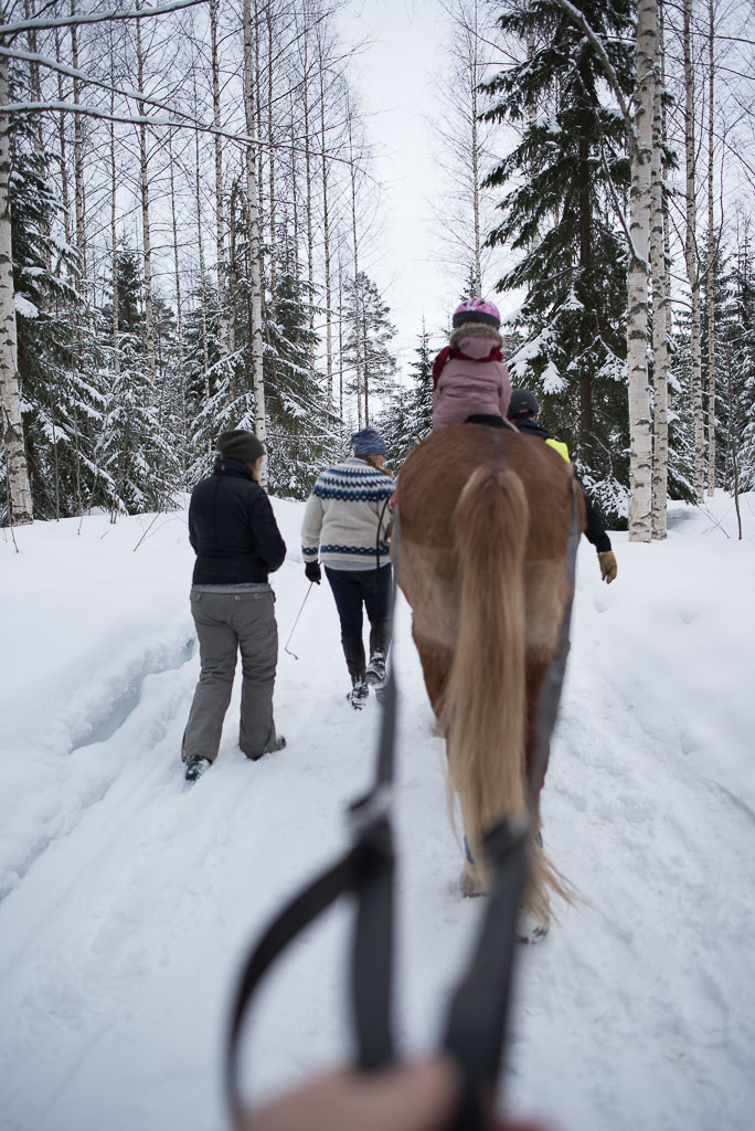 2018-03-24-horse-skiing-4_LR edited_web.jpg