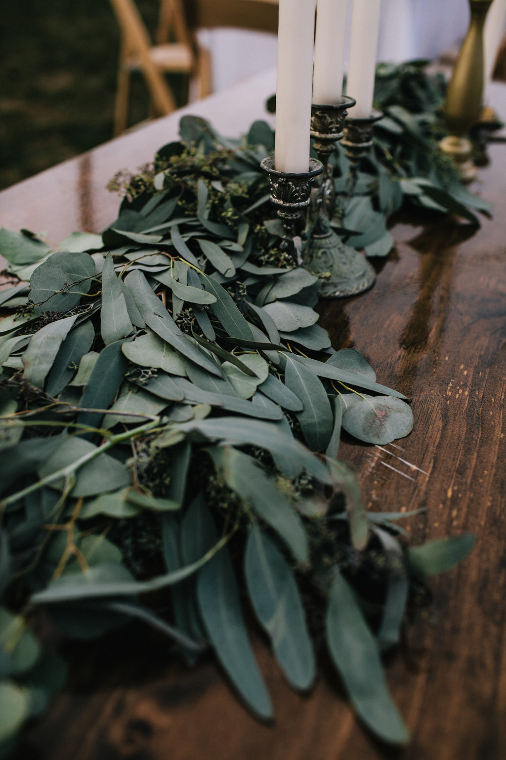 Detail, Eucalyptus Leaves, Wedding of Annie & Silas, Bristol, Rhode Island