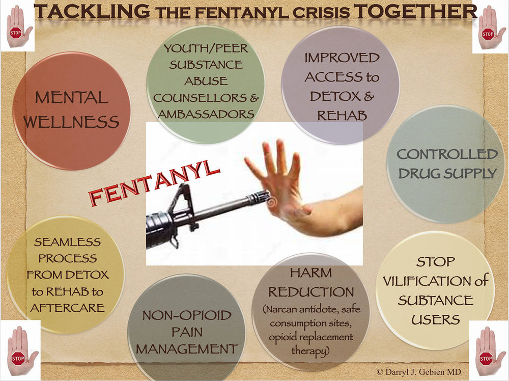 Copy of Stopping the Fentanyl Crisis Together- Gebien.jpeg