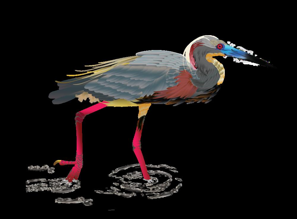 final-heron.png