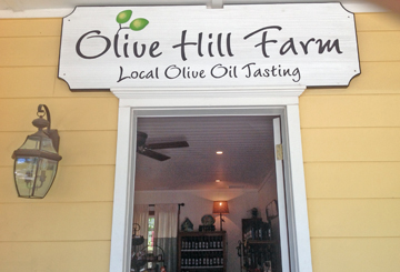 olivehillfarm1.jpg