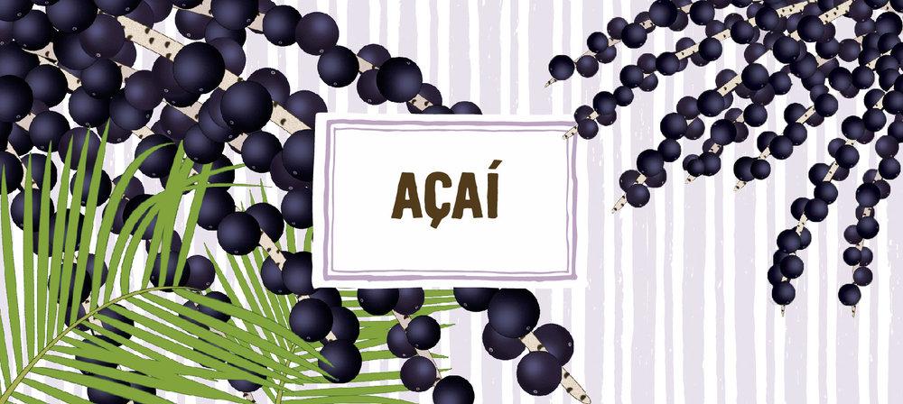 Site_Açai_760x340.jpg