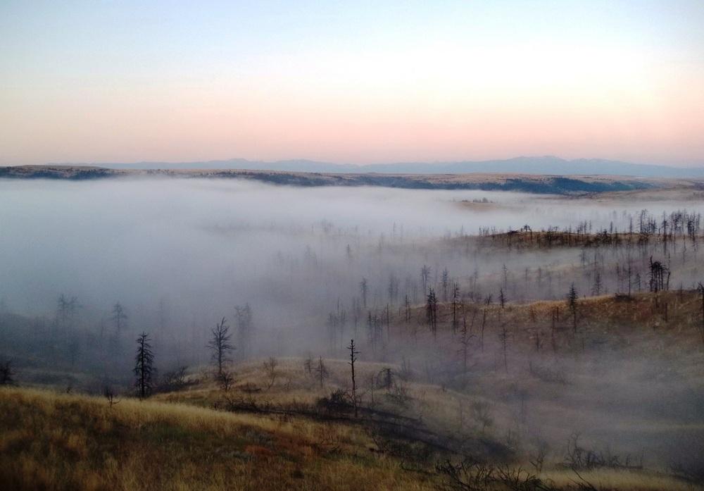 2011-09-02 - Hi-Res Morning Fog at the Seiver Ranch.JPG
