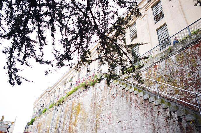 alcatraz49.jpeg