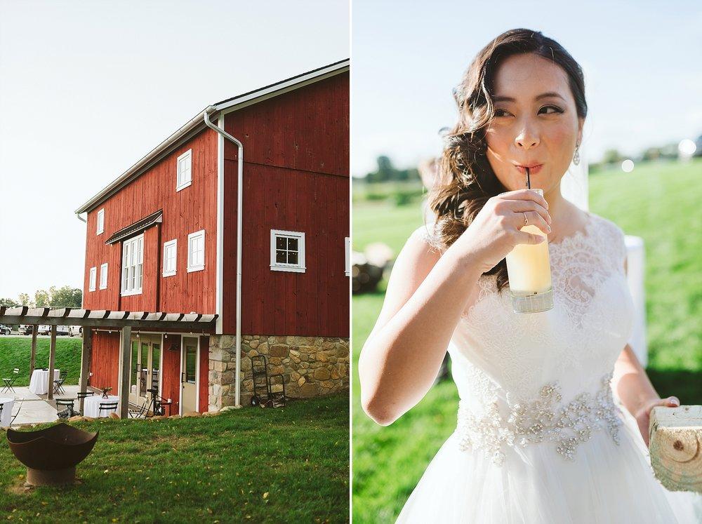 Michigan Destination Wedding Photographer_0260.jpg