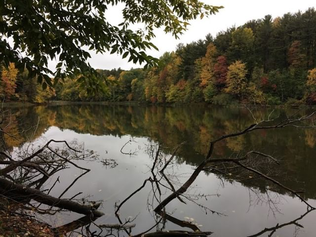 Like many active people I love getting outdoors on the weekend. In particular I'm a huge fan of getting into the woods and hiking. This list of the 9 Amazing Benefits of Hiking – Physical, Mental and Social is from an article I posted on facebook and I couldn't agree more. I personally love the mental and unplugged aspect of it. 1. Improves overall fitness, and builds muscles 2. Helps you lose weight 3. Improves blood pressure, and lowers risk of heart disease 4. Makes you more creative 5. It can help your body heal 6. Improves overall mental health 7. It helps you unplug 8. Hiking makes us happier 9. Hiking can be a great boost to our social lives #Relentless #Outdoors #Hiking #Unplug