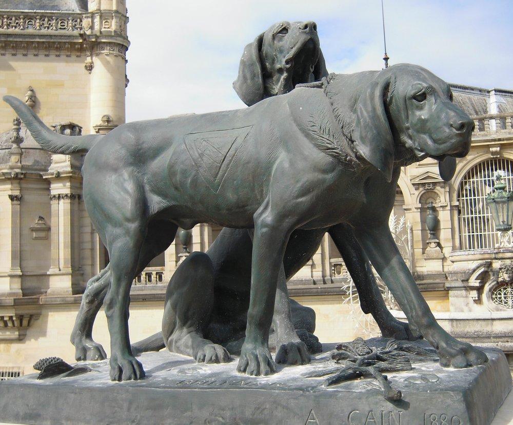 Fanfareau_et_Brillador_-_deux_chien_de_Chantilly.jpg