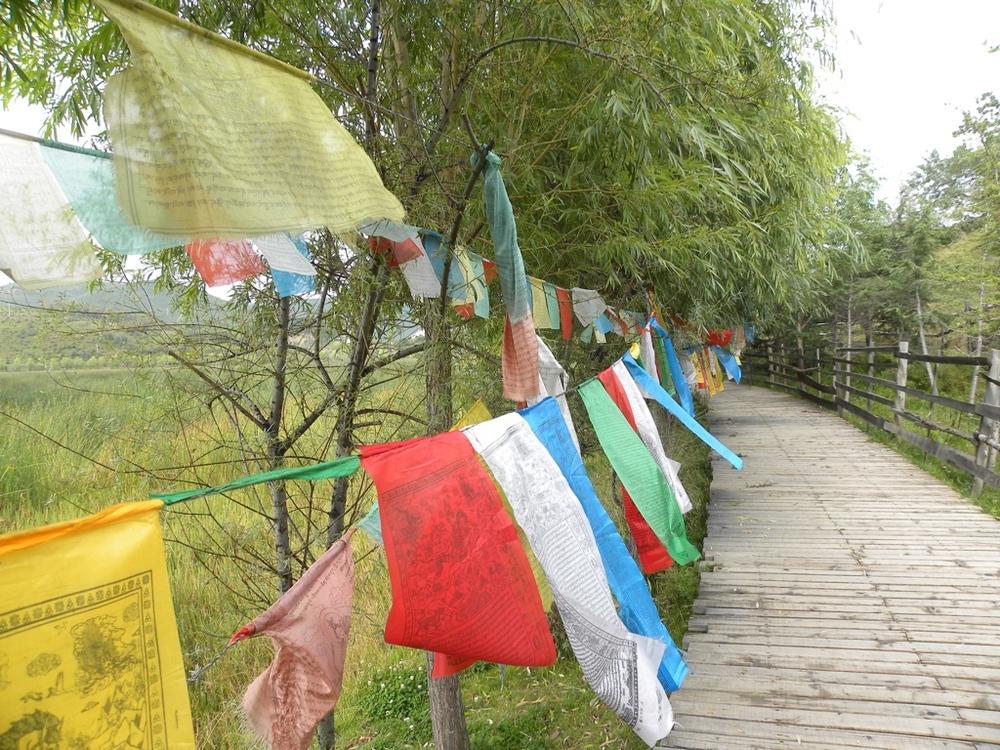 Prayer flags Zhongdian near Songzanlin Monastery