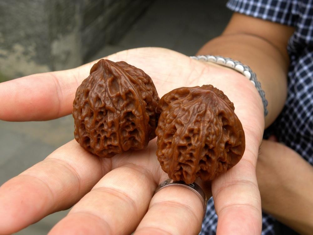 Petrified walnuts for finger agility
