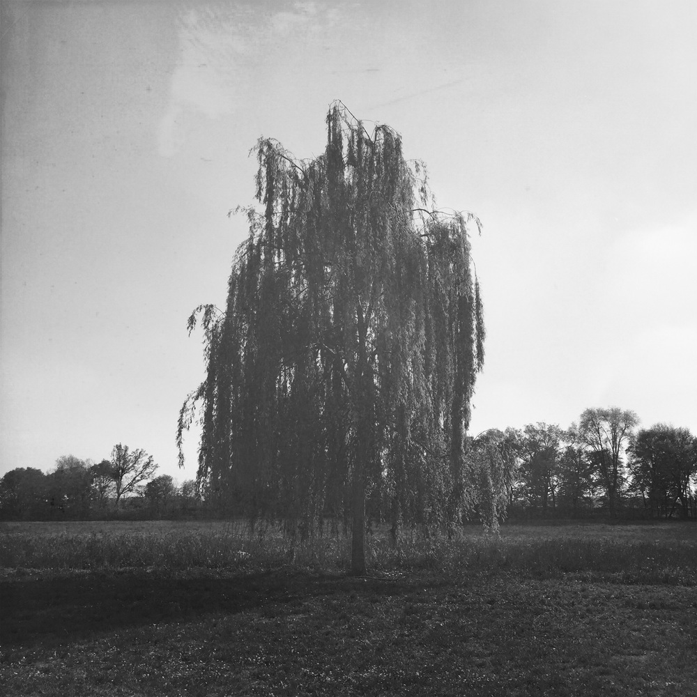 Villa Buri, Verona // iPhone + Hipstamatic
