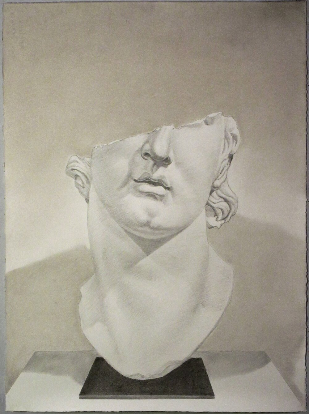 Pergamon Alexander, 2016, pencil and chalk on paper, 22 x 30""