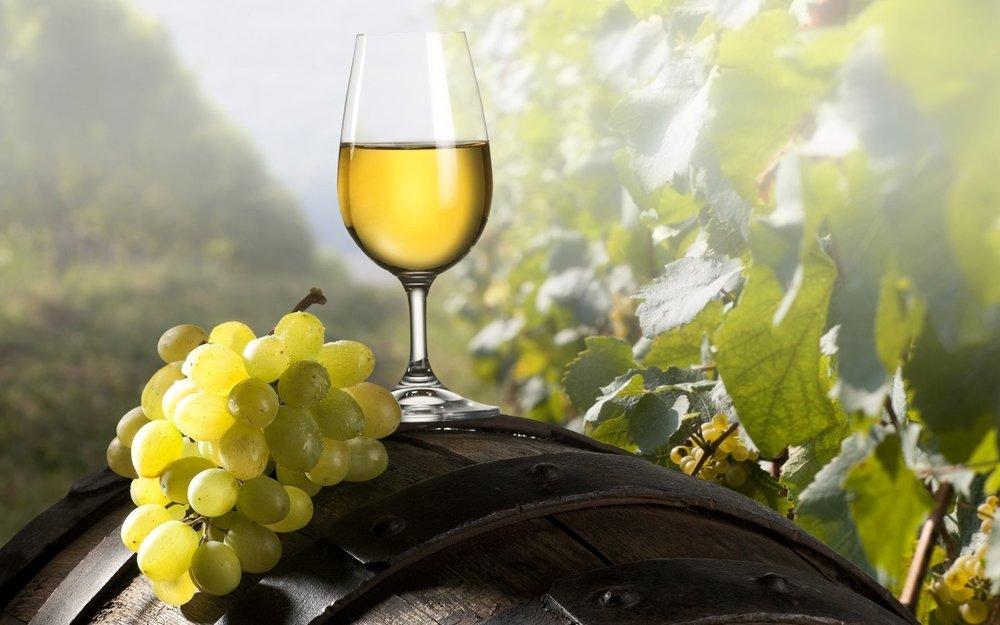 Food_Drinks_Grape_wine_glass_026811_.jpg