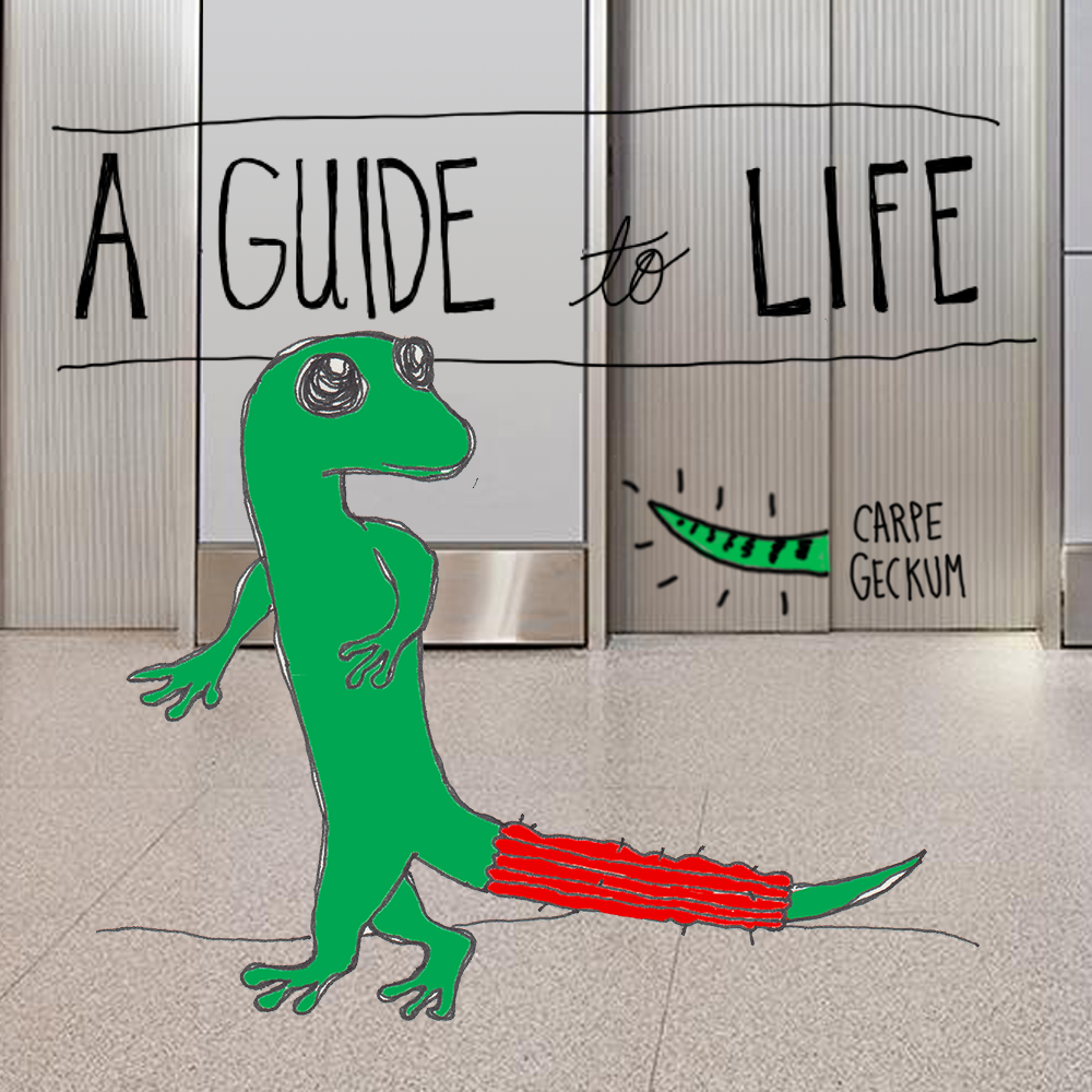 Geico-Gecko-Title-Card.png