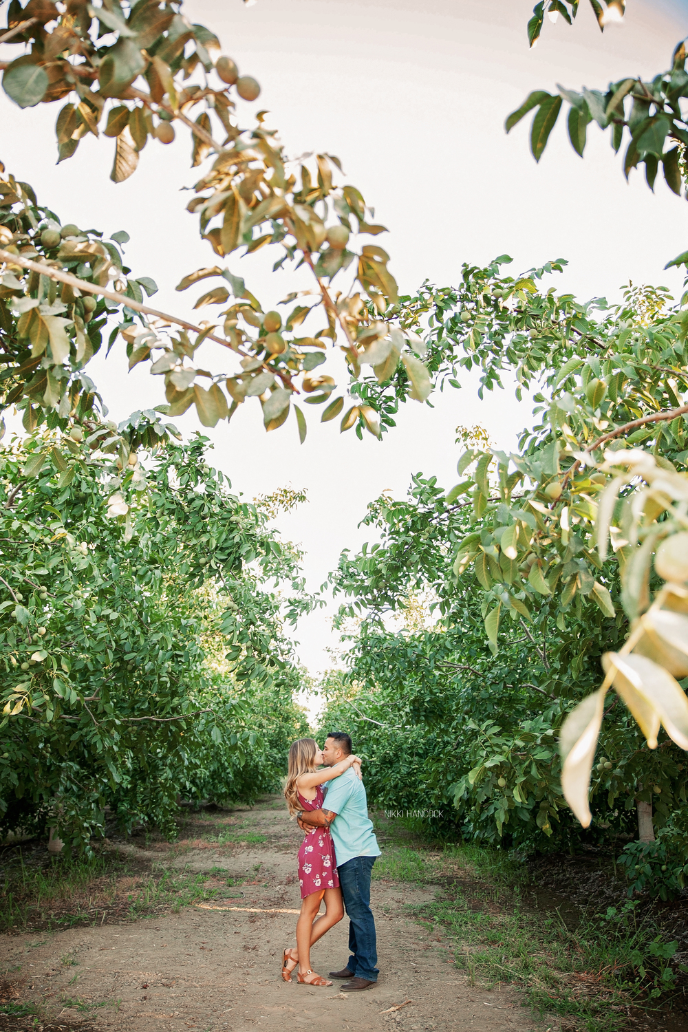 Walnut orchard engagement session, Northern Californiaa
