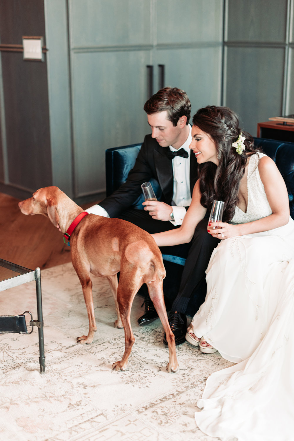 Wedding portrait bride groom wedding reveal gown tuxedo dog