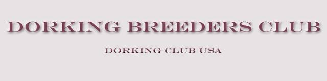 Dorking Breeders Club