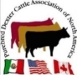 Purebred Dexter Cattle Association