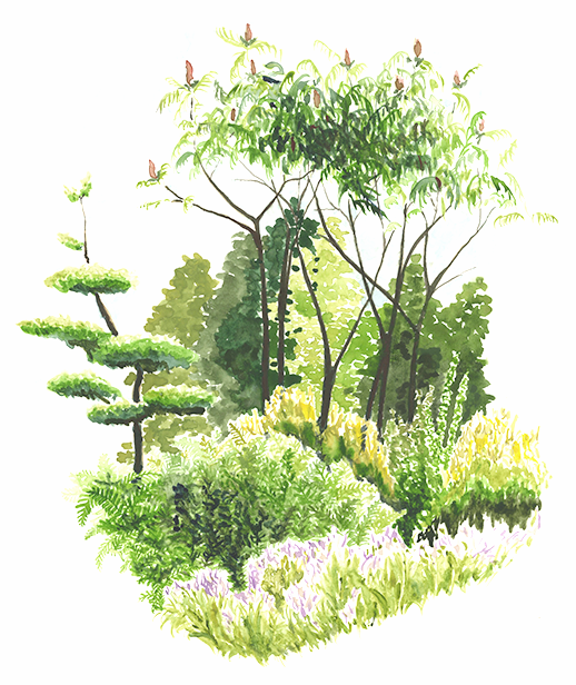 wildcountryside016.png