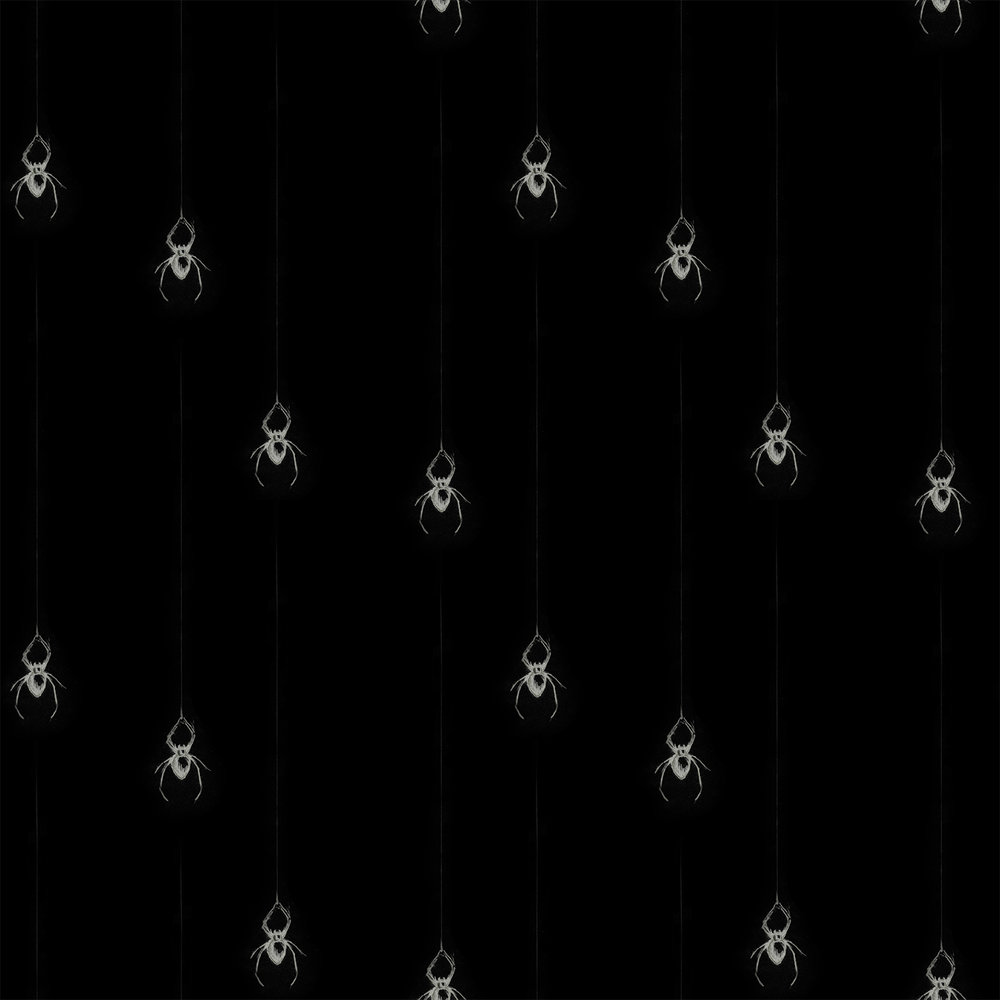 spidercoord.jpg
