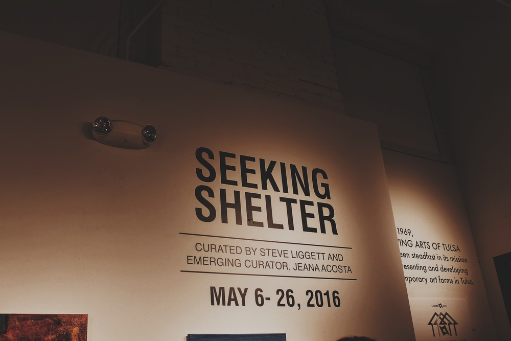 Seeking Shelter Exhibit :  First Friday Opening, May 2016