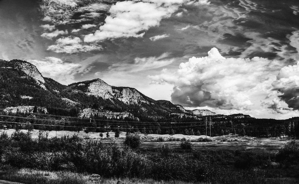 Hills of NM