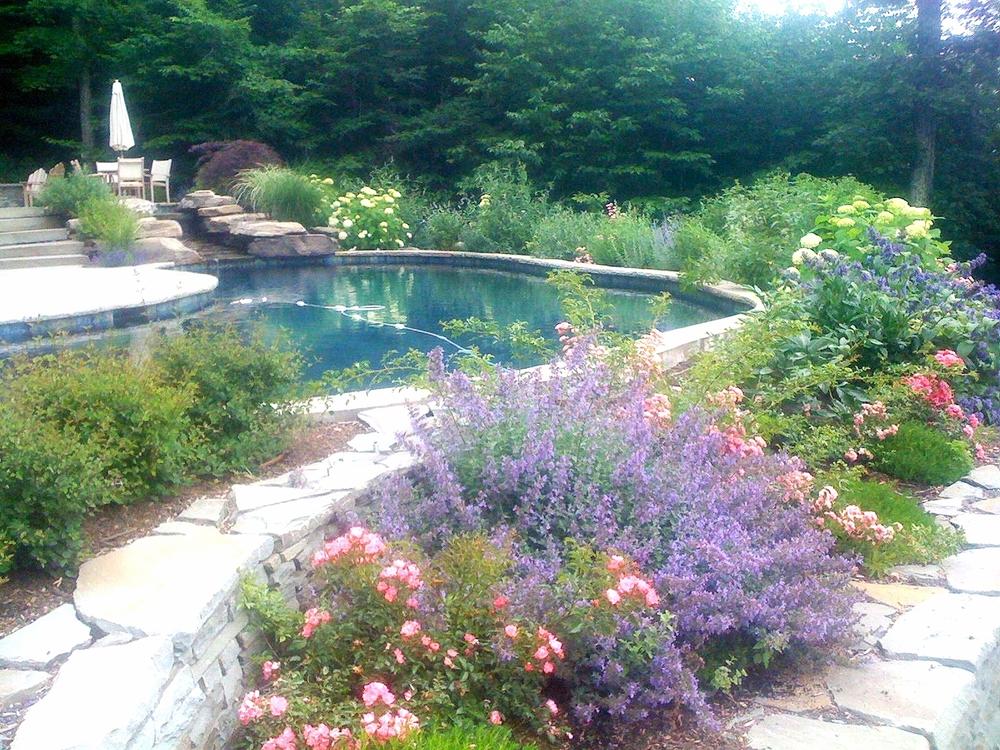 Gallery Serenity Gardens Design