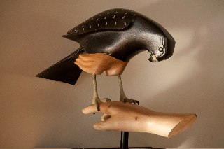 Falcon-Kauri-NZ-Native-Bird-Sculptures-Martin-Carryer.jpg