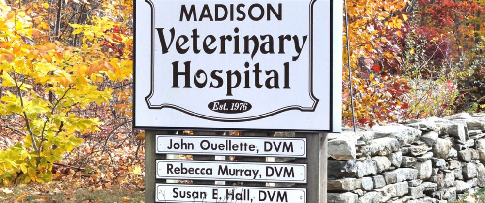 Madison Veterinary Hospital.jpg