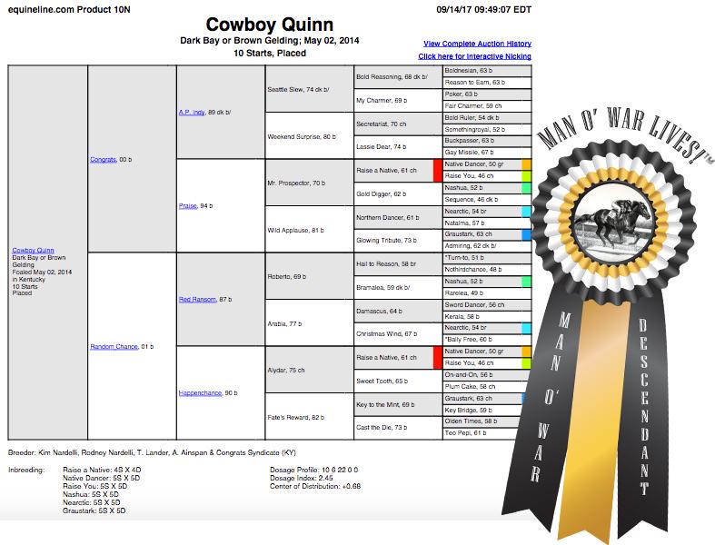 Cowboy Quinn Man o War TM.jpg