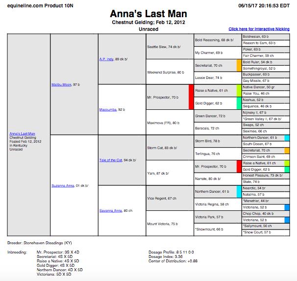 Anna's Last Man.png