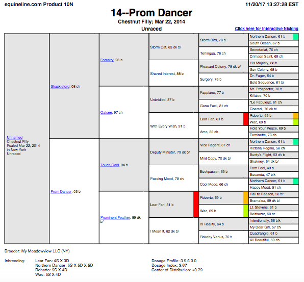 Prom Dancer '14.png