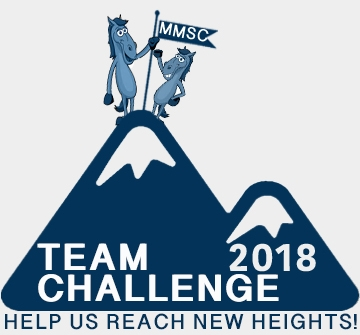 Team Challenge logo.jpg