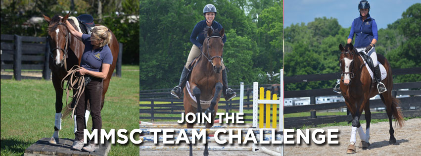 Team Challenge 1.jpg