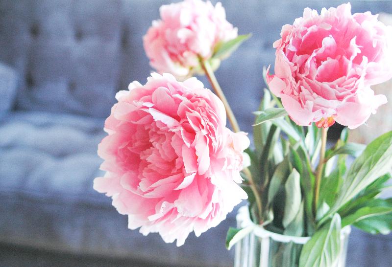 LivingRoom_PinkPeonies