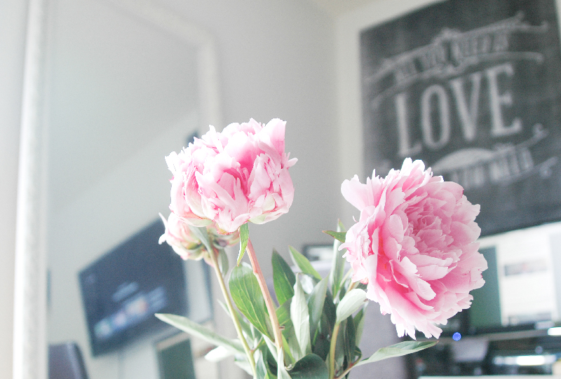 Workspace_Peonies