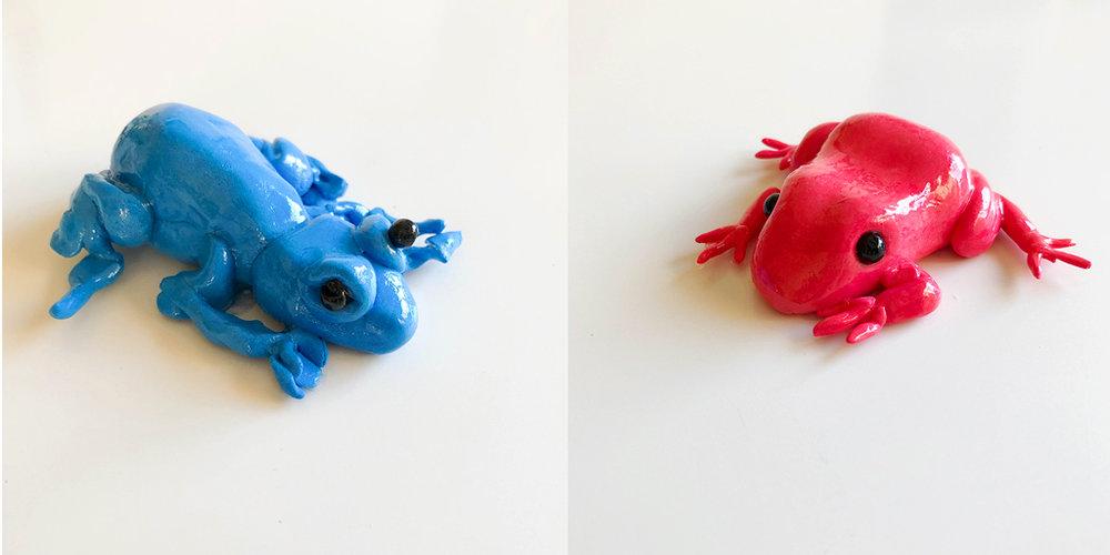 Feb5_Frogs.jpg