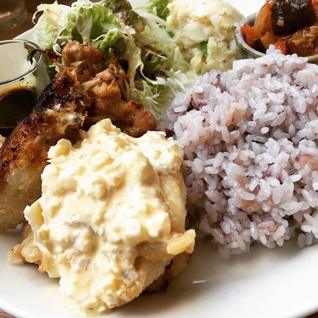 リクエストランチ開催中 今日はチキン南蛮または豚ロールカツ #yummy #chiken #japan #Nagano #ueda #Hanalab #sunnyday #lunch #cafe