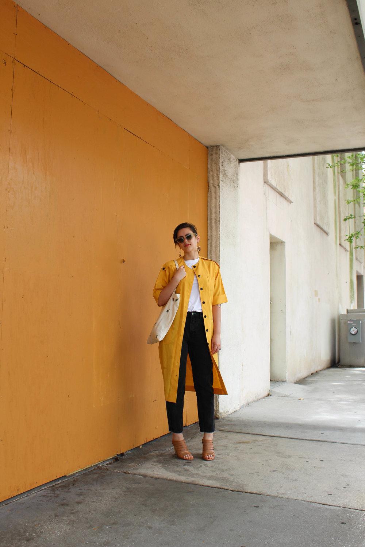 yellowjacket-5.jpg