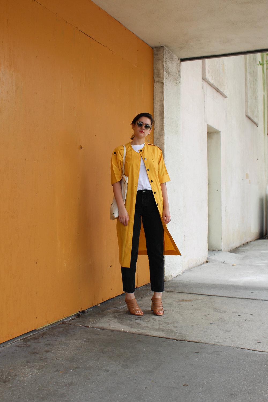yellowjacket-4.jpg