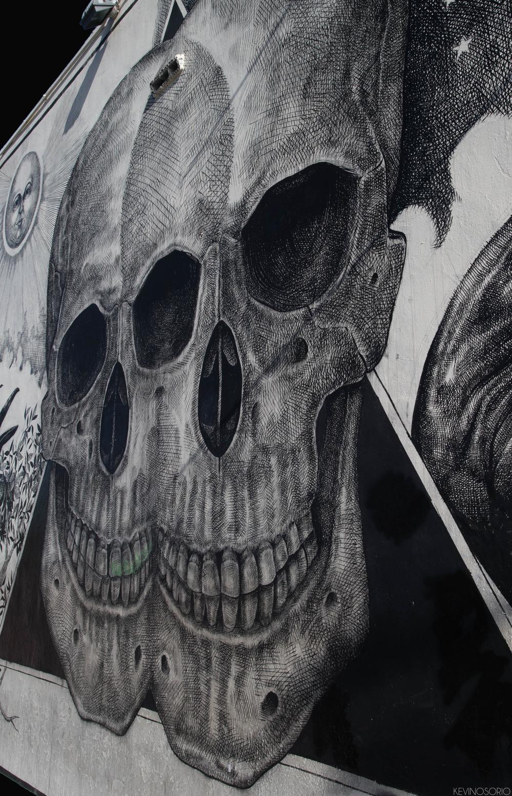Skull (1 of 1) FIxed .jpg