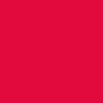 Intrepid_Main-logo_RGB_Web.png