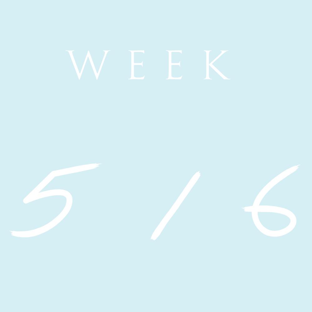 week 2 (2).png