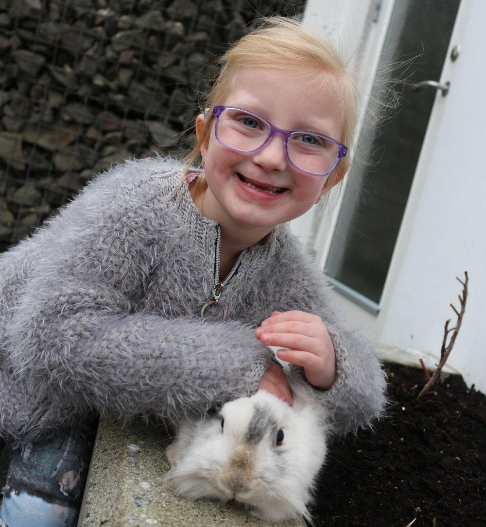 Kaninin hjá Klara Mariu eitur Elsa.