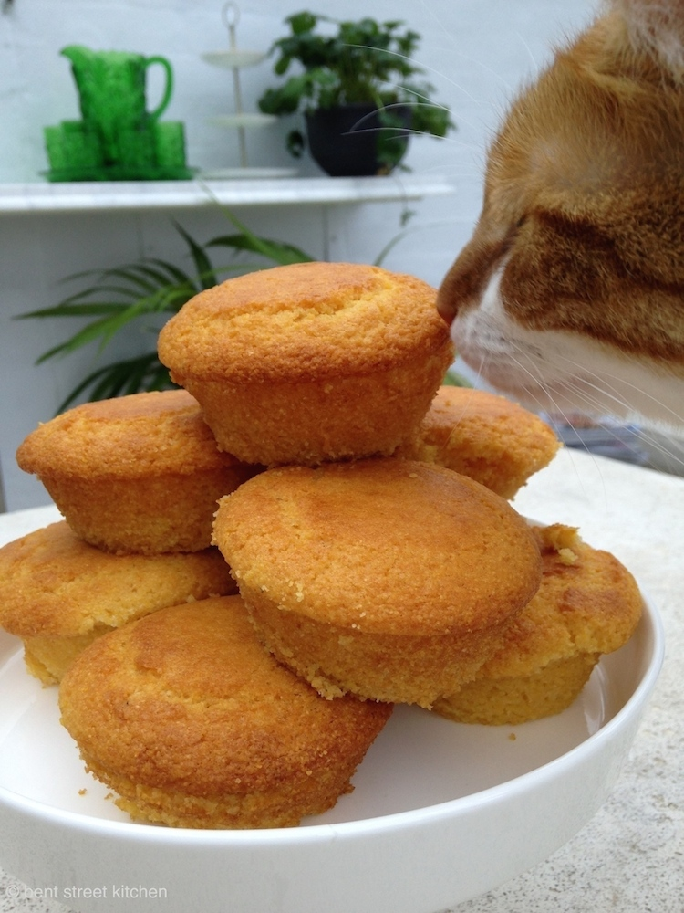 Cornbread by Bent Street Kitchen. Tofu testing the cornbread with her little piglet snout.