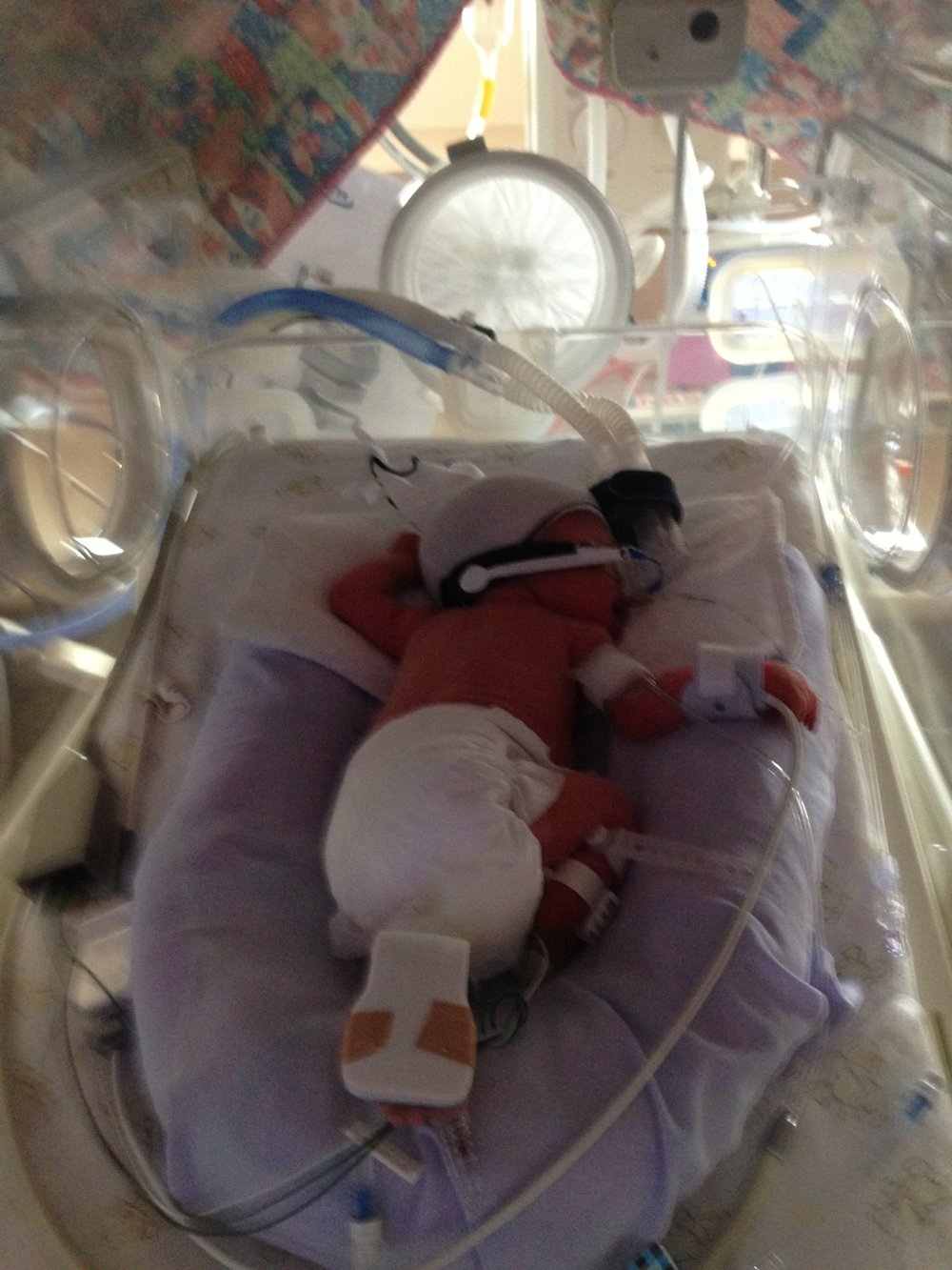 Asha just born