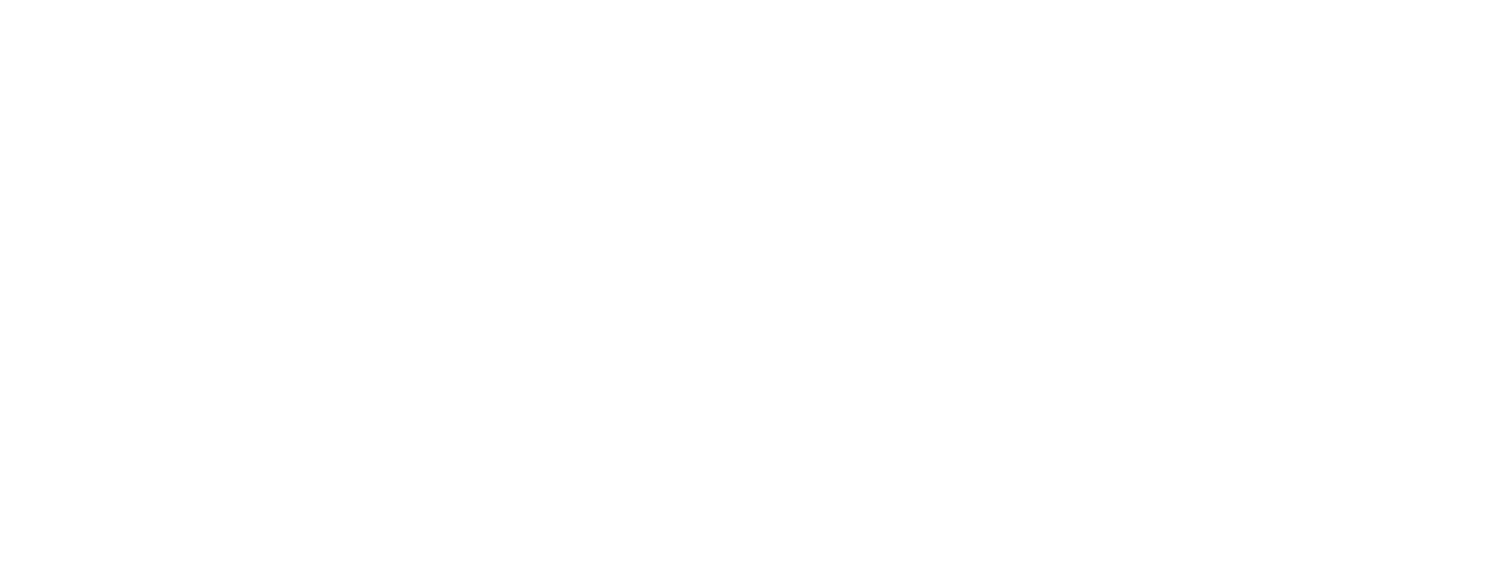 Fifth Eye