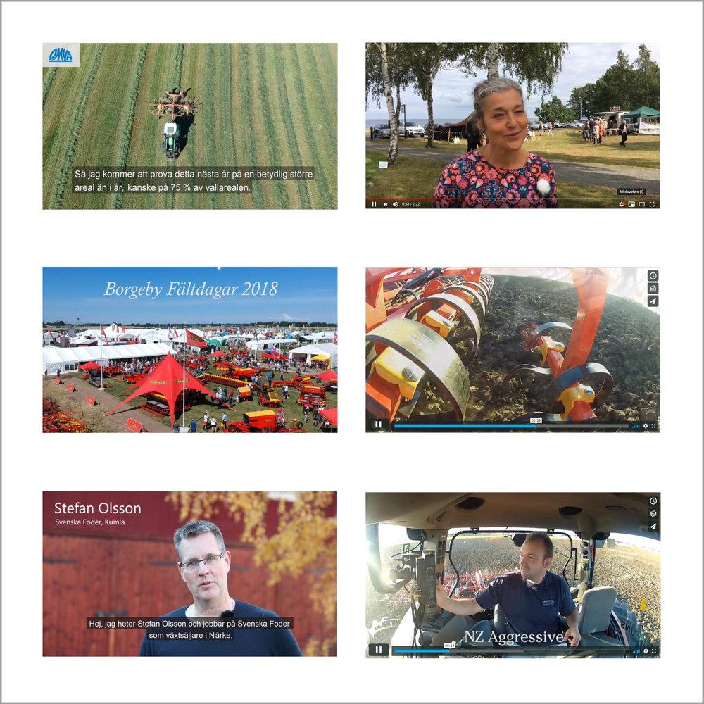 collage-foto_2.jpg