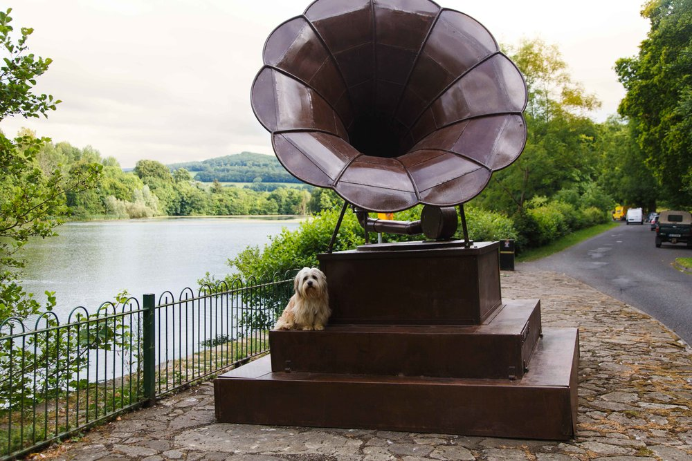 The Gramophone by Donnacha Cahill. Image: Brid O'Donovan.