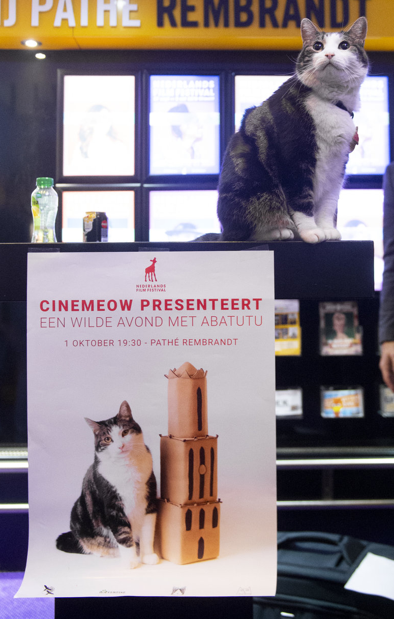 181001086+CineMeow2.png